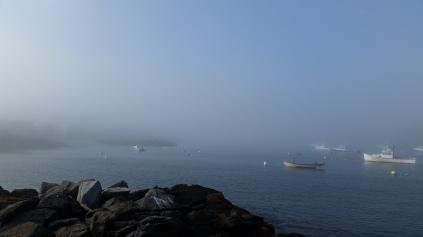 foggy monhegan harbor