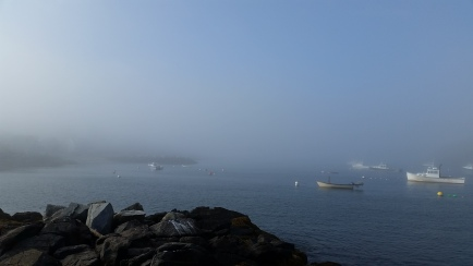 foggy monhegan harbor